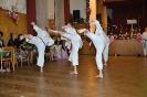 Ukázka ples Čerčany 2017_4