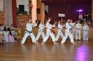 Ukázka ples Čerčany 2017_5