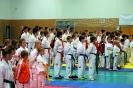 TKD Sparring na Mikulášském poháru 2018